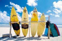 Plaża, Deski surfingowe - plakat - 91,5x61 cm  Gdzie kupić? www.eplakaty.pl