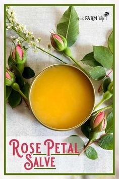 This rose petal salve recipe is made with real rose petals along with rosehip seed oil, which has amazing benefits when applied to mature, sun-damaged, dry, or irritated skin. This rose petal Natural Health Remedies, Herbal Remedies, Home Remedies, Healing Herbs, Natural Healing, Natural Medicine, Herbal Medicine, Salve Recipes, Salud Natural