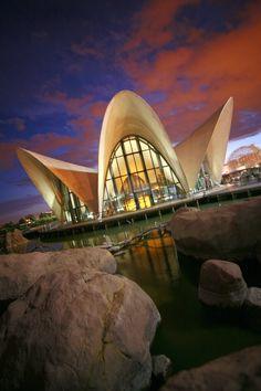 El Centro Comercial El Saler loves #Oceanogràfic. Ciudad de las Artes y las Ciencias. #Valencia / via @Ciudad Artes Ciencias www.cac.es