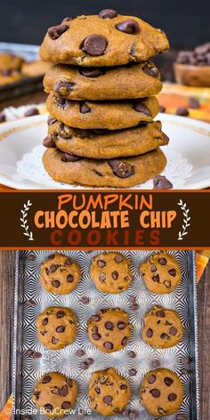 Chocolate Chip Cookies - these soft pumpkin cookies loaded with chocolate are a must make every fall. Make this recipe and watch everyone devour the entire batch in a hurry! Soft Pumpkin Cookies, Pumpkin Chocolate Chip Cookies, Pumpkin Dessert, Healthy Pumpkin Cookies, Pumpkin Truffles, Lemon Truffles, Coconut Truffles, Pumpkin Bars, Oreo Truffles