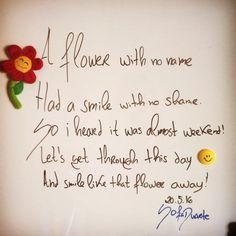 Insane, let's be insane. #words #SofiaDuarte #smile 😊