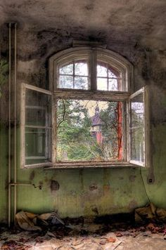 Old windows with lots of character