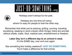 Let's be good to animals this #LaborDay weekend - and always. So many are not. JUST DO SOMETHING #ROC #USA
