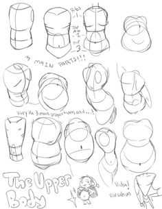 http://anatomicalart.tumblr.com/post/115802376859/krispykitten-we-had-to-do-a-style-guide-for-my