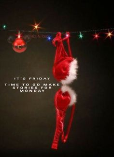 Friday Humor, Photos Tumblr, Cool Websites, Christmas Ornaments, Holiday Decor, Prints, Bucket, Santa, Christmas Jewelry