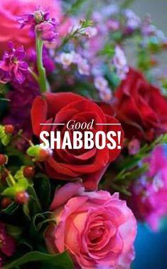 Shabbat Shalom Images, Good Shabbos, Happy Sabbath, Pentecost, Trumpets, Torah, Israel, Thoughts, Sayings