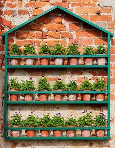 Garden On A Wall
