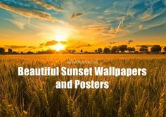 Beautiful sunset wallpapers Beautiful sunset stock photos