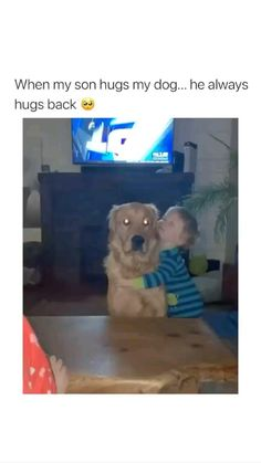 Cute Baby Dogs, Cute Funny Dogs, Cute Dogs And Puppies, Cute Funny Animals, Doggies, Cute Animal Videos, Cute Animal Pictures, Funny Animal Jokes, Animal Memes
