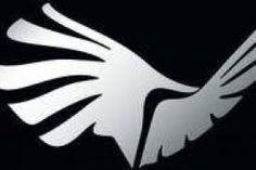 Accordo Aironi-Associazione Giocatori sui tagli ai contratti. E un dubbio grosso così