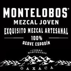 1000 images about mezcal articles on pinterest mezcal tequila