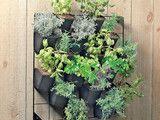 Kiikku White Planter - asian - outdoor planters - - by Unison Home