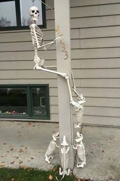 skeleton Dachshunds chasing someone up a pole.  great for Halloween!  love this!     lj #dachshund