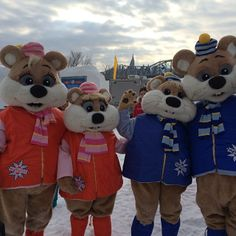 Ice Hog Family at Winterlude 2014 in Ottawa, Canada. For more information on Winterlude visit www.ottawatourism.ca Sports Advertising, Jacques Cartier, Ottawa Canada, Ice Sculptures, Our World, Ice Skating, Ontario, Teddy Bear, Culture