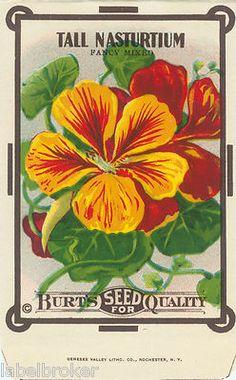 Burpee's vintage seed packet art  #nasturtium