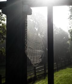If we aren't seeing the beauty that surrounds us we're likely not looking around us! There is much to learn from what nature has to teach. Perhaps the weavings of a spider web may point to the essential connections of all those who live upon this earth.