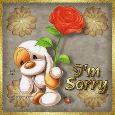 Sajnáljuk Picture