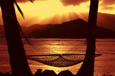 5 Least Stressful Places to Live in America Moving To Hawaii, Hawaii Travel, Kings Hawaiian, New Earth, Outdoor Furniture, Outdoor Decor, Hammock, The Row, Fun Facts