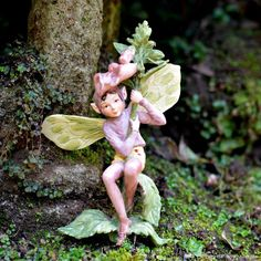 FOXGLOVE FAIRY - Yet another stunning Cicely Barker Flower Fairy to grace our warehouse. This stunning fairy is ready to enchant your magical fairy garden today. What a beautilful little fairy soul. The most divine little fairy shorts too boot. #fairygardeningaustralia