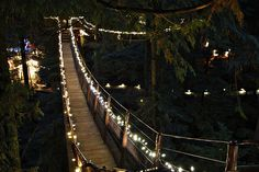 canyon lights :: capilano suspension bridge :: vancouver :: bc