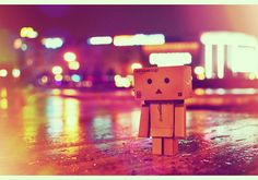 amazon danbo by Alexandru Alex on 500px