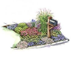 Mailbox Planting Plan:  Plan a garden around your mailbox for an inviting and cheerful look./