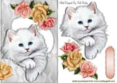 CUTE BLUE EYED KITTEN WITH ROSES on Craftsuprint - Add To Basket!