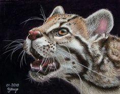 Night Hunter. Ocelot by irishishka. Pastel