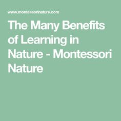 The Many Benefits of Learning in Nature - Montessori Nature