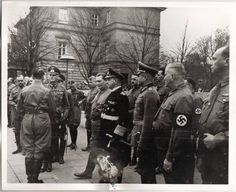 Adolf Hitler (back to camera at the left) greeting Generalfeldmarschall Wilhelm Keitel with Hermann Göring, Großadmiral Erich Raeder, and Generaloberst Walther von Brauchitsch watching at the right. Hoffmann photograph printed by the US Army from captured film. Dated 9 November, 1938. Alfred Rosenberg at the left background.