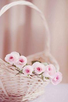 ƸӜƷ •✿ Beautiful ✿• ƸӜƷ