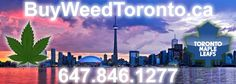 Buy Weed In Toronto Ontario 647-846-1277