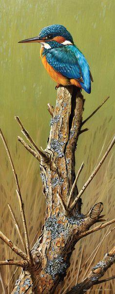 16-Oiseaux peints divers artistes ( T.J.B )                                                                                                                                                                                 Plus