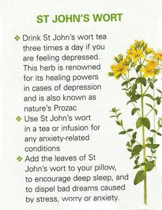 John's Wort For Depression Treatment is a very popular herb and has come into prominence due to its wide usage as an anxiety and stress relieving herb. This shrubby perennial plant bears … Natural Health Remedies, Natural Cures, Natural Healing, Herbal Remedies, Healing Herbs, Medicinal Plants, Natural Medicine, Herbal Medicine, St John's Wort Tea