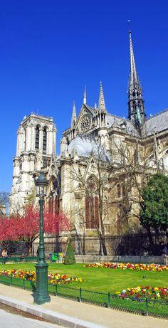 Notre-Dame cathedral in the end of March. // La cathédrale Notre-Dame de Paris à la fin mars. #Paris #VisitParis #NotreDame