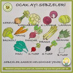 OCAK AYINDA ARTIK DOMATES, SALATALIK, BİBER, PATLICAN, KABAK GİBİ YAZ SEBZELERİ YENMEZ! OCAK'TA KIŞ SEBZELERİ YENİR! Slow Food, Installation Art, Herbalism, Health, Comic, Chart, Beautiful, Herbal Medicine, Health Care