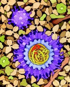 Hepatitis B. Hand-drawn watercolor illustration from David Goodsell, a molecular biology Professor at the Scripps Research Institute.