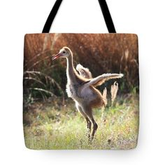 Fluffy Sandhill Crane Baby Tote Bag by Carol Groenen #sandhillcrane