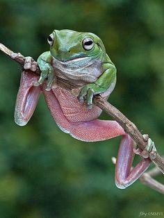 Hanging on....