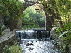 MAXIMILIANO CASA DE CAMPO Jardin Borda, Cuernavaca, Morelos