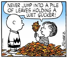 """A bit of wisdom from Linus in Charles Schulz's comic strip. and reprised in """"It's the Great Pumpkin, Charlie Brown"""" on TV. Peanuts Cartoon, Peanuts Gang, Schulz Peanuts, Peanuts Comics, Snoopy Comics, Snoopy Love, Snoopy And Woodstock, Charlie Brown And Snoopy, Happy Fall Y'all"""