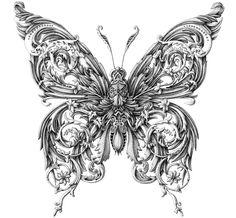 Dibujos hiperrealistas de insectos labrados por Alex Konahin