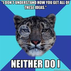 "Writer Leopard - ""I don't understand how you get all of these ideas."" neither do i"