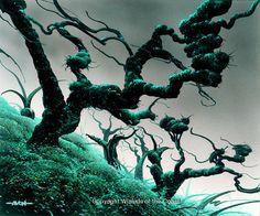 Forest by John Avon.