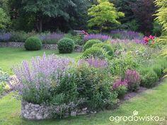 Kolorowy ogród na piasku - strona 547 - Forum ogrodnicze - Ogrodowisko Stepping Stones, Outdoor Decor, Stair Risers