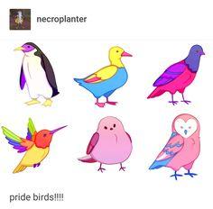 tag urself I'm the duck Lgbt Memes, Pansexual Pride, Lgbt Love, Lgbt Community, Gay Art, Cute Gay, Gay Pride, Ducks, Saga