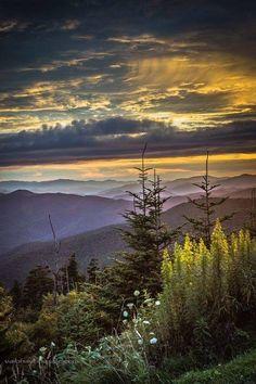Great smokey mountain national park
