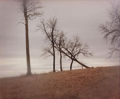 Todd Hido - Excerpts from Silver Meadows @ Bruce Silverstein Gallery (NY)