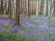 Bluebell Wood, Sizergh, Lake District