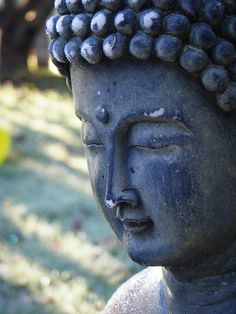 "Buddha: ""Peace comes from within. Do not seek it without."""
